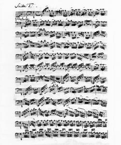 Bach1sa2