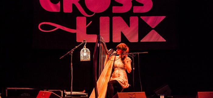 Recensie Cross-linx festival